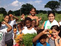 Gateway-Community-Garden-Carrot-Harvest200