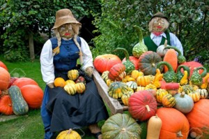 Save the Date: Pumpkin Selling training @ Main Hall | Old Westbury | New York | United States
