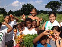 Gateway-Community-Garden-Carrot-Harvest200